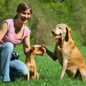 Erfolgsmeldung aus der Abteilung Tierschutz