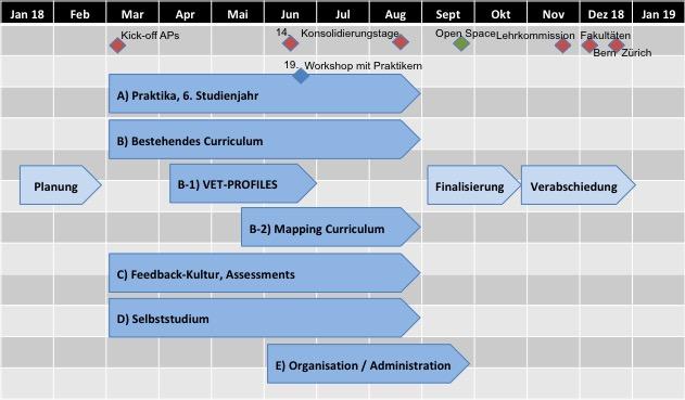 Übersicht Projektvorgehen Detailplanung Curriculum 2020